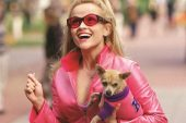 Legally Blonde 3 é o mais novo projeto de Reese Witherspoon