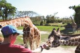 Zoo Miami Presents Discounts For Summer